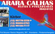 Arara Calhas - (12) 997703556